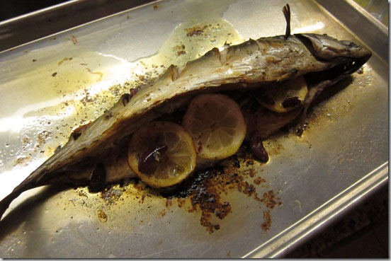 mackerel-out-of-oven