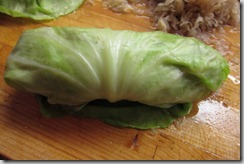 Cabbage-rolls-rolled
