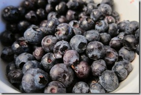 Blueberries-thawed-frozen
