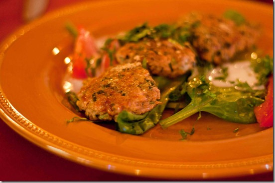 Jolly's Indian Bistro Chicken Kabob