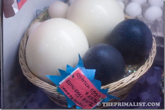 The Creamery Ostrich and Emu Eggs